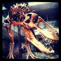 Photo taken at Natural History Museum of Los Angeles County by Gwen on 10/2/2012