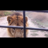 Photo taken at Parque Safari by Oscar R. on 1/24/2013