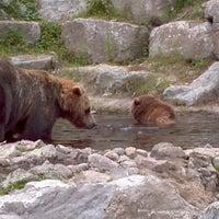 Photo taken at Zoo sauvage de Saint-Félicien by David D. on 8/4/2013