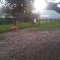Photo taken at Alameda Dog Park by Denise C. on 12/18/2012
