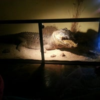 Photo taken at Crocodile Sanctuary by Lee-Anne A. on 8/11/2013