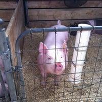 Photo taken at Swine Barn by Navin R. on 8/30/2014