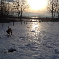 Photo taken at Burlington Waterfront Dog Park by Roscoe M. on 1/13/2014