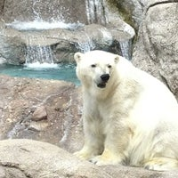 Photo taken at Indianapolis Zoo by Chuck W. on 6/9/2013