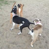 Photo taken at Alameda Dog Park by WreSalene on 11/15/2012