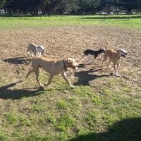 Photo taken at Alameda Dog Park by WreSalene on 12/12/2012