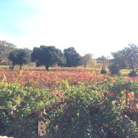 Photo taken at Little Vineyards & Winery by Lauren W. on 11/8/2014