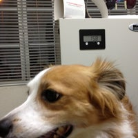Photo taken at Whittier Dog & Cat Hospital by Benjamin D. on 10/23/2012