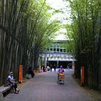 Photo taken at Alamanda Shopping Centre by Shukri H. on 12/27/2012