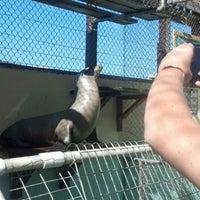 Photo taken at Morro Bay Aquarium by Meghan M. on 9/18/2013