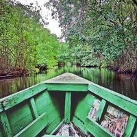 Photo taken at Caroni Bird Sanctuary by Seattle D. on 7/19/2013