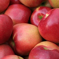 Photo taken at Sages Apples fruit farm by Sages Apples fruit farm on 3/10/2016
