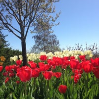 Photo taken at Lucas Vineyards by Qianna B. on 5/5/2013