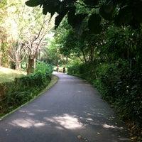 Photo taken at Singapore Botanic Gardens by Kening Z. on 4/12/2013