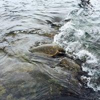 Photo taken at Hōnaunau Bay Puʻuhonua Pt. by Karim on 7/31/2015