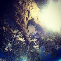 Photo taken at Форшмак by Natalya S. on 11/24/2012