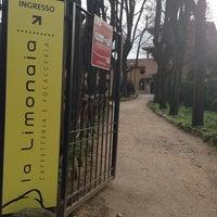 Photo taken at La Limonaia by Francesca Romana F. on 2/20/2014