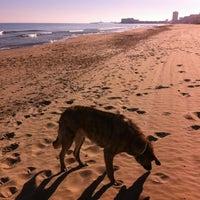Photo taken at Playa del Tabal_La Manga by Jorge U. on 1/1/2014