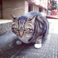 Photo taken at Queen Street Rest Garden 皇后街休憩花園 by Pete Y. on 12/25/2012