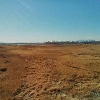 Photo taken at Belle Isle Marsh by Shreyas on 11/16/2013