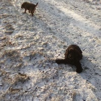 Photo taken at Knole Park by Christopher L. on 1/22/2013