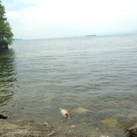 Photo taken at Burlington Waterfront Dog Park by Jessie on 6/22/2013