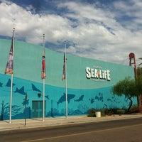 Photo taken at Sea Life Aquarium by Dave J. on 7/14/2013