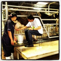 Photo taken at Farm Chokchai by Navee S. on 11/24/2012