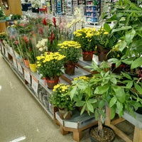 Photo taken at Zehrs by Michael M. on 9/12/2016