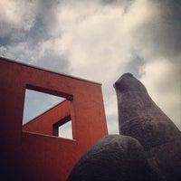 Photo taken at Museo de Arte Contemporáneo de Monterrey (MARCO) by Betico on 5/25/2013