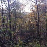 Photo taken at Core Arboretum by Hzia2011 on 10/18/2011