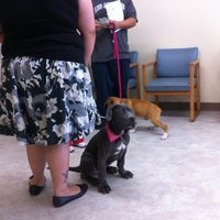 Photo taken at Whittier Dog & Cat Hospital by Jacqueline R. on 6/2/2012