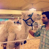 Photo taken at State Fair of Texas 2012 by The Joe B. on 1/7/2015