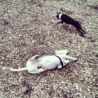 Photo taken at Columbia Dog Park by Aaron N. on 10/26/2013