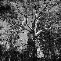 Photo taken at Ρέμα Χαλανδρίου by John T. on 3/18/2013