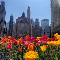 Photo taken at The Magnificent Mile by @steveGOgreen on 5/8/2013