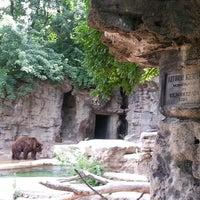 Photo taken at Saint Louis Zoo by Tow-resa on 7/3/2013