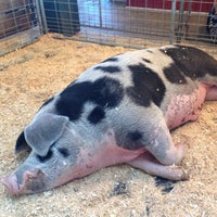 Photo taken at Swine Barn by Kevin B. on 8/27/2014