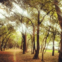 Photo taken at Bosque de Chapultepec by patriciaph on 1/8/2013