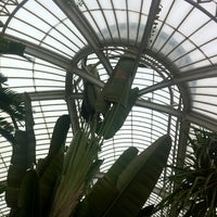Photo taken at Palm House by Matthew R. on 10/28/2012