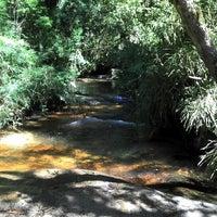 Photo taken at Horto Florestal de Campos do Jordão by Rodolfo D. on 11/17/2012