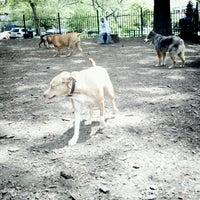 Dog Refuse Leave Park