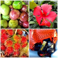 Photo taken at Kahuku Land Farms Fruit Stand by Tina M. on 11/11/2014