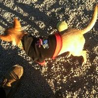 Photo taken at Loring Park Off-Leash Recreation Area by KAI M. on 11/1/2012