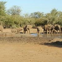 Photo taken at Lower Sabie Rest Camp, Kruger National Park by Kyle B. on 5/30/2016
