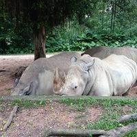Photo taken at Xiang Jiang Safari Park, Guangzhou by Sarjis💫 on 10/7/2013
