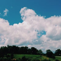 Photo taken at Barboursville Vineyards by Paul Travis K. on 7/4/2013