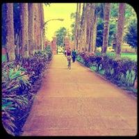 Photo taken at Universidad de Puerto Rico by Sandra D. on 9/18/2013