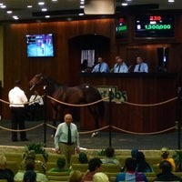 Photo taken at Ocala Breeders Sale by James H. on 3/11/2014