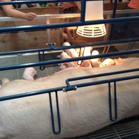 Photo taken at Swine Barn by Nancy H. on 8/27/2015